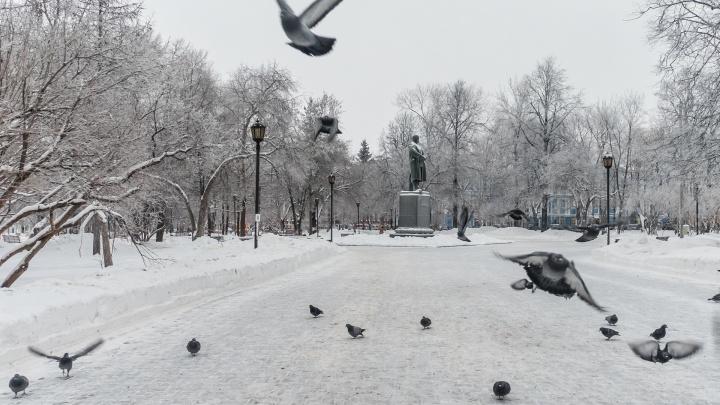 Морозы отступают. Рассказываем о погоде на выходные в Прикамье