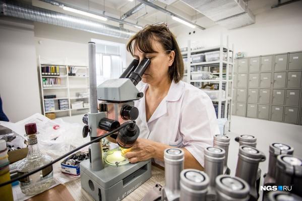 Зарплату ученых можно рассматривать под микроскопом: они получают по 25–30 тысяч, хотя должны зарабатывать в несколько раз больше