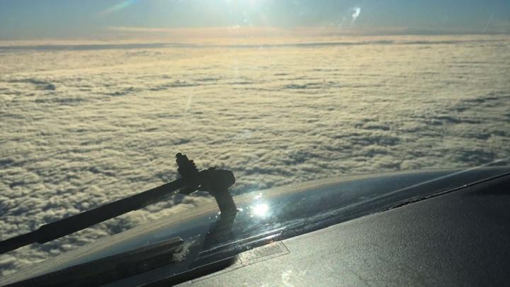 «Стюардессам было реально страшно»: летевший в подавшем сигнал бедствия самолете волгоградец рассказал, что происходило на борту