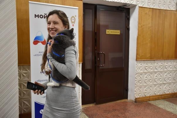 Исцеляющие коты: в Архангельске работает центр, где домашние питомцы помогают справиться со сложными эмоциями