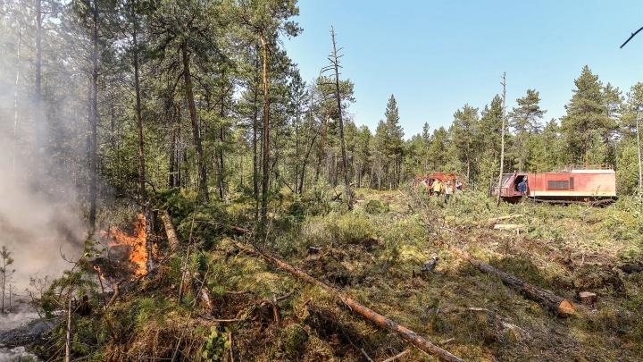 В Свердловской области действуют 29 природных пожаров, еще 12 потушили