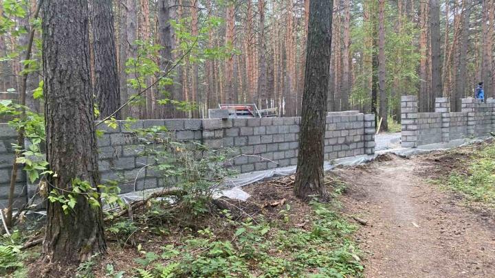 В Дударева часть леса обнесли кирпичным забором. Этот участок принадлежит бизнесмену Чемезову