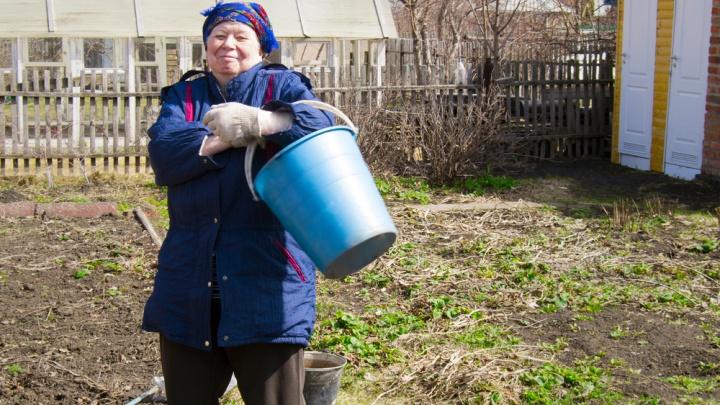 «Не превращайте сады в помойки»: «Красноярская рециклинговая компания» напомнила, куда выкидывать мусор