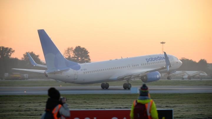 Самолет «Победы» вернулся в Кольцово из-за возможного столкновения с птицей