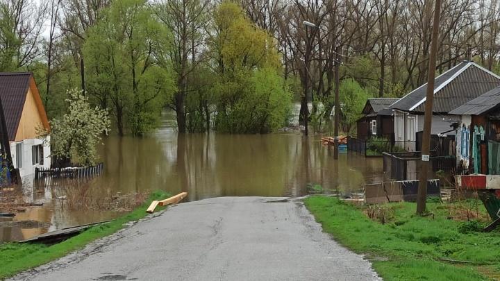 «Воды в доме по пояс»: на юге края подтопило три села, готовится эвакуация