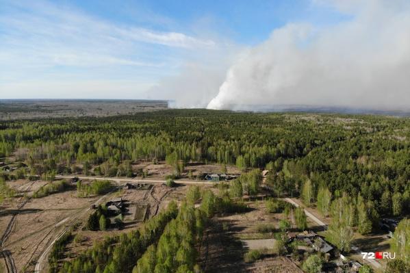 Берегите лес от пожара и соблюдайте меры предосторожности
