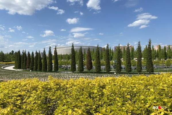 Летом в парке «Краснодар» начинают цвести растения