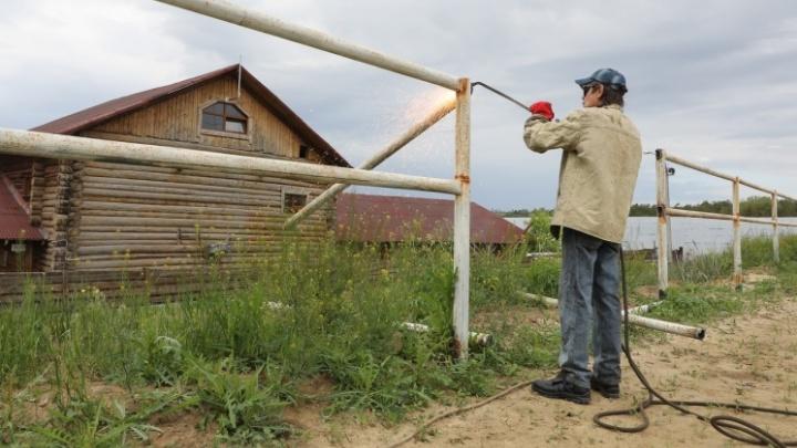 «Помогите остановить беспредел»: в Волгограде сотрудники «Соснового бора» просят помощи у Александра Бастрыкина