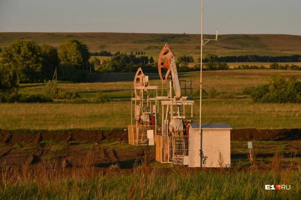 Месторождения нефти могут появиться на границе с ХМАО