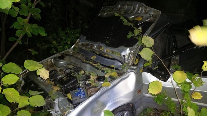 Неопытный водитель погиб после лобового столкновения с лосем