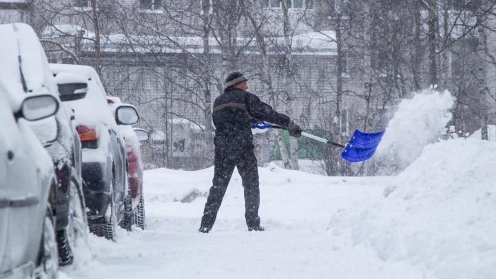 «Либо УК жаль 2тысячи рублей, либо просто лень»: Дмитрий Морев высказался об уборке дворов от снега