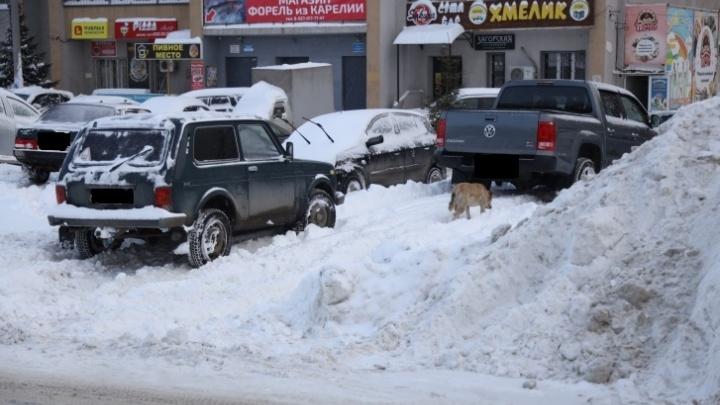 Жителей Самары попросили не оставлять машины около домов