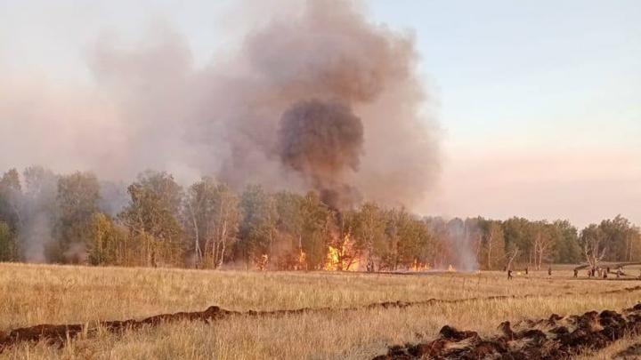 В шести районах Башкирии бушуют пожары