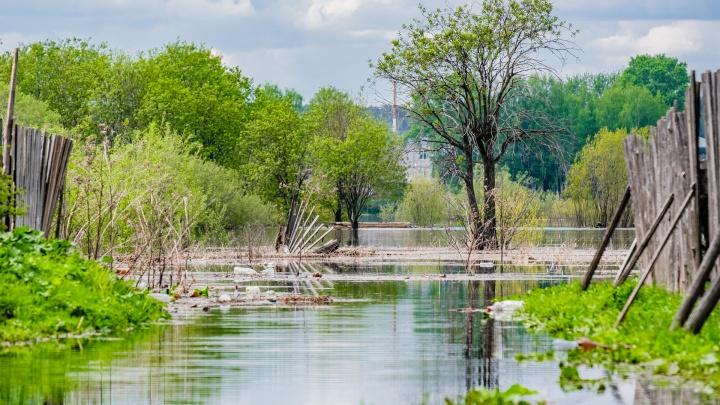МЧС предупреждает о ливнях и сильном ветре в Прикамье. Возможно резкое повышение уровня воды в реках