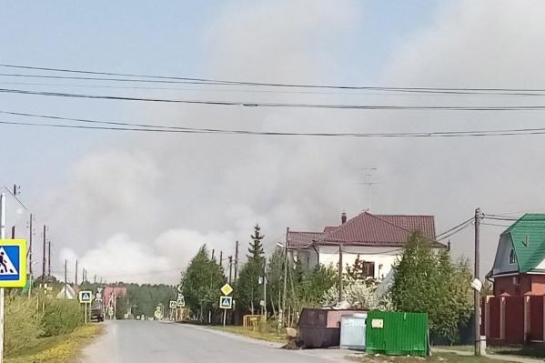 Это уже второй природный пожар в Тюменском районе
