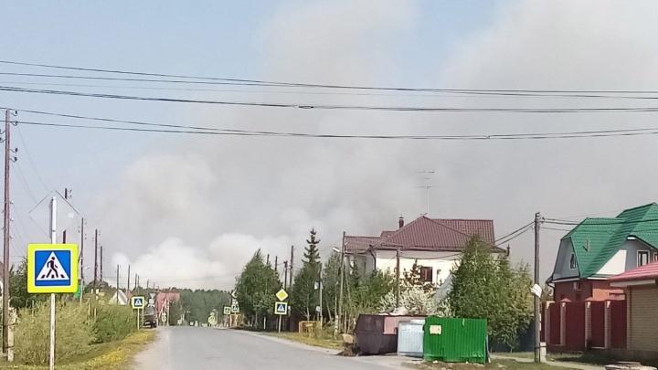 Загорелся лес в окрестностях поселка Боровского и Юрт. Дым распространяется по всей округе