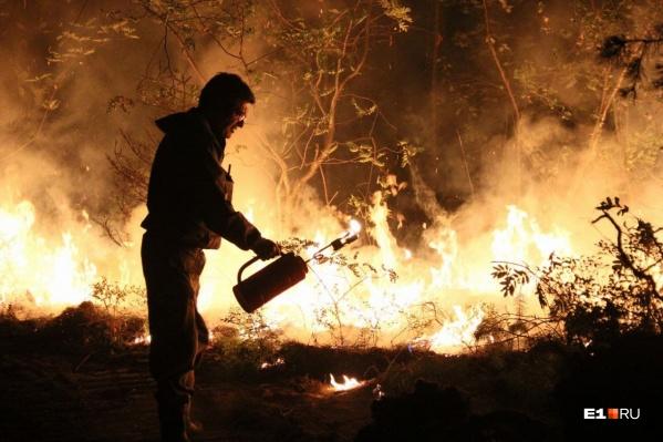 Чтобы справиться с огнем, спасатели пускают встречный пал