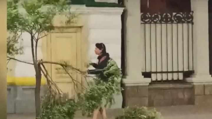 «Кидалась на меня с отверткой»: очевидец рассказал о поведении девушки, которая ломала ивы на Ленина