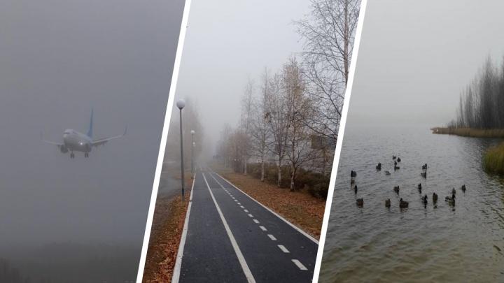 Югра окутана туманом: смотрим красивые фотографии из соцсетей