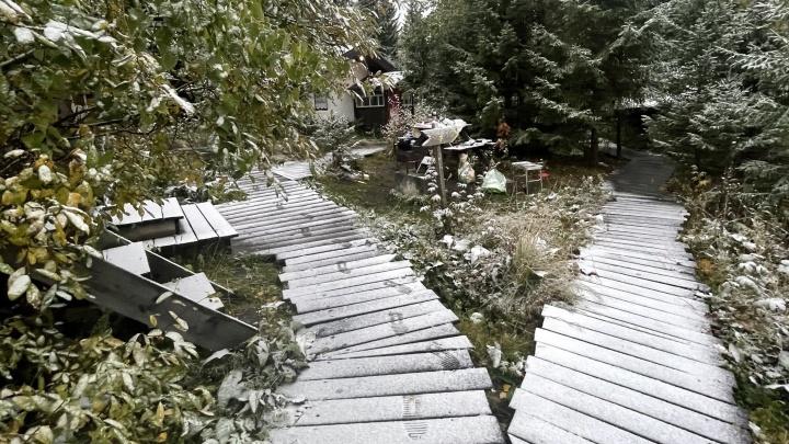 Зима близко: в Свердловской области выпал снег