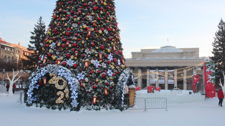 Из-за протестов в Новосибирске не смогли начать демонтаж новогодней елки