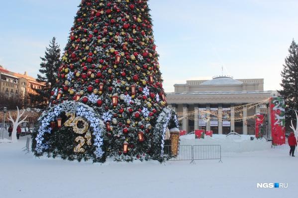 Новогоднюю елку должны были начать демонтировать уже с утра