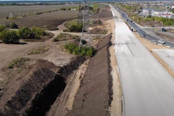 """Ради строительства моста и дороги вырубили <nobr class=""""_"""">38 гектаров</nobr> леса"""