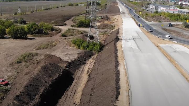 В Самарской области хотят продать лес, который вырубили для строительства моста через Волгу