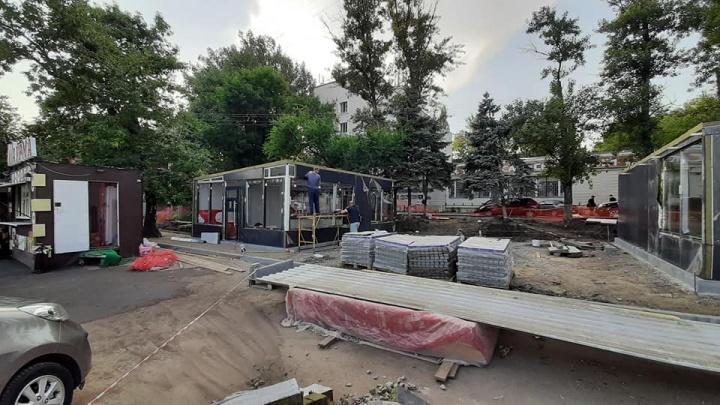 Администрация Ростова не увидела нарушений в вырубке деревьев в Александровке