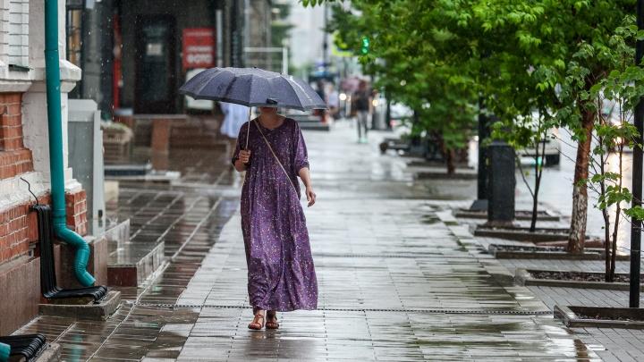 Красноярцев ожидают дождливые и теплые выходные