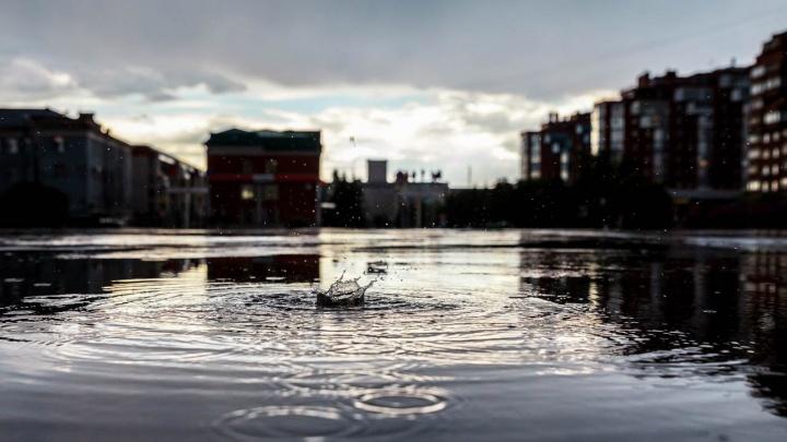 Дождливая погода сохранится в Омске с приходом новой рабочей недели