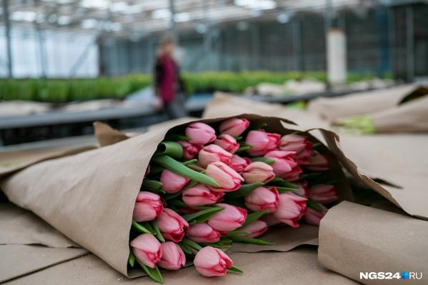 """В УЗС тюльпаны в розницу продают по <nobr class=""""_"""">70 рублей</nobr> за штуку"""