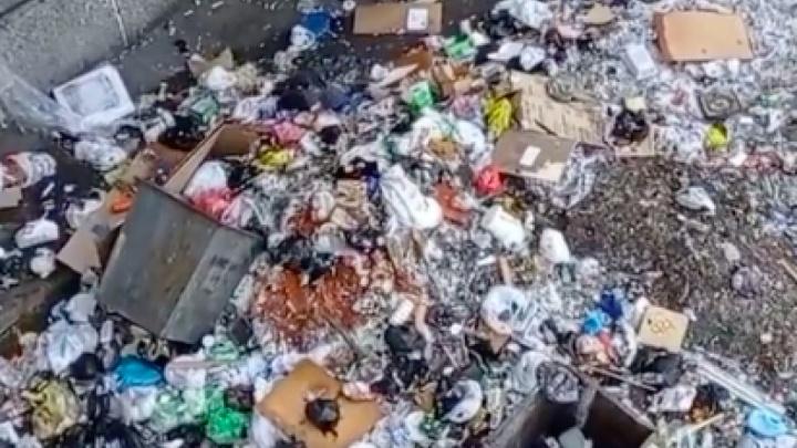 Как в Средневековье: жильцы красноярской общаги выкидывают мусор прямо из окон