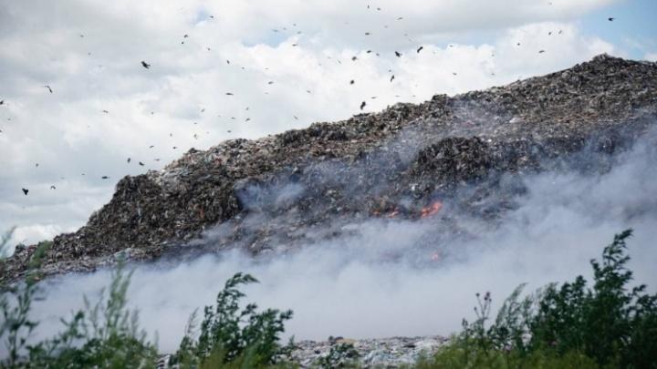 Суд в Москве признал законным повышение тарифов на вывоз мусора в НСО