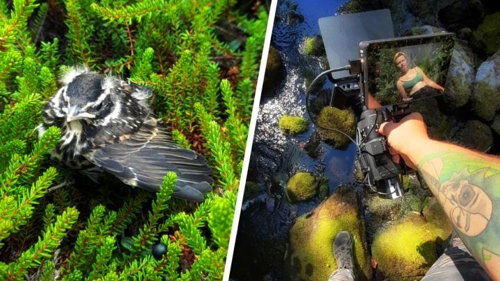 100 километров пешком: как экологисты искали мусор по летнему берегу Белого моря. Фоторепортаж