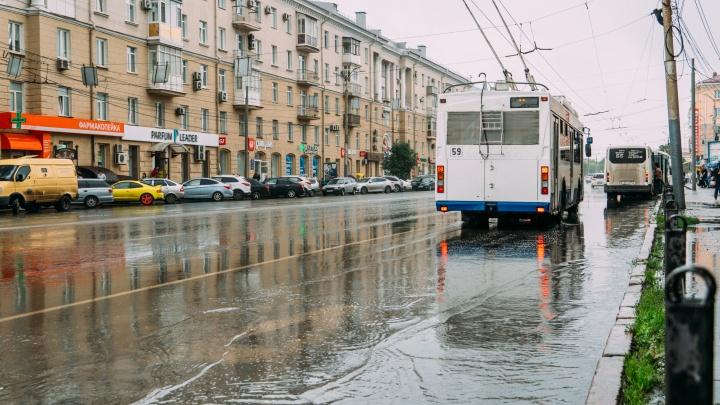 Выделенные полосы в Омске: зачем они нужны и где сделают новые