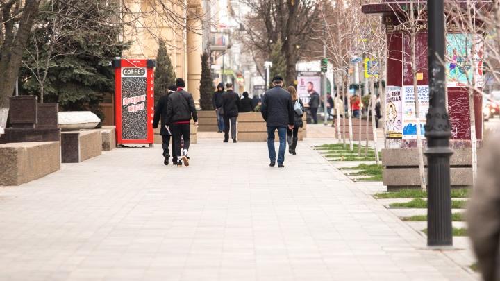 В Ростове пересмотрят и наполнят смыслом проект реконструкции парка Горького