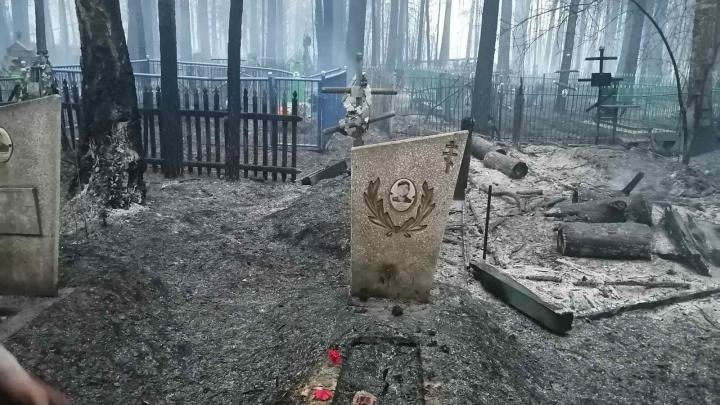 Сгорело кладбище, жители вышли защищать деревню— кадры лесного пожара в тюменском поселке