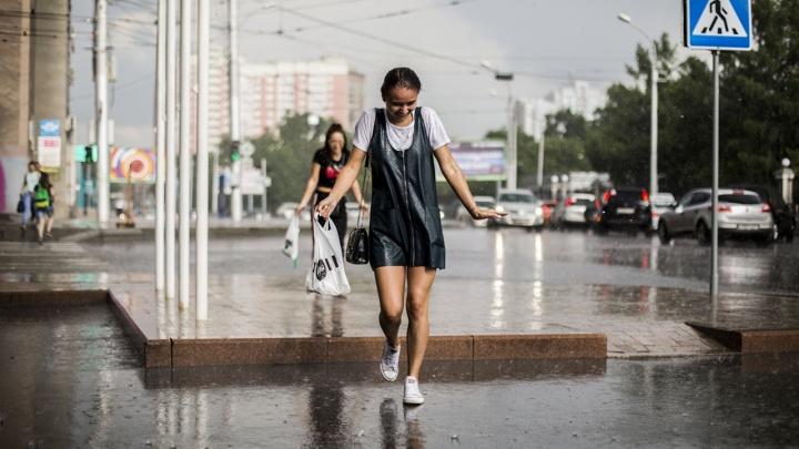 От гроз до возвращения жары. Какая погода ожидает Новосибирск на грядущей неделе?