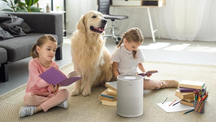 Как защитить свою семью от высокой концентрации вредных веществ в воздухе