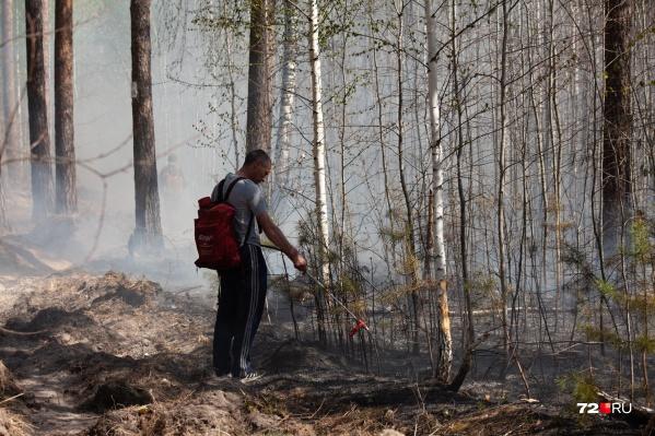Экстренным службам нужна помощь в борьбе с пожарами