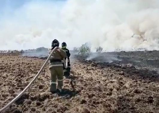 В Зауралье мобилизовали 350 пожарных и 150 единиц техники