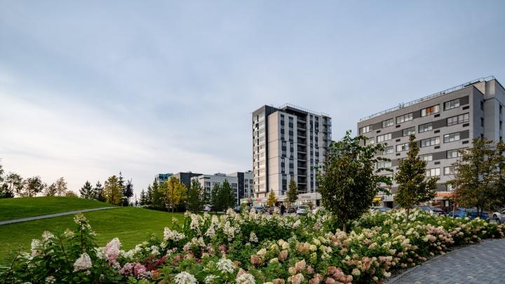 Инстарайон для жизни: как развивается маленькая Европа на юге Екатеринбурга