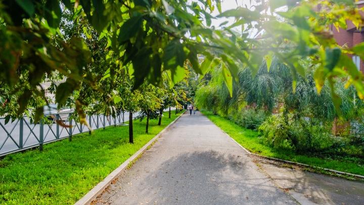 В выходные в Прикамье будет тепло и очень ветрено