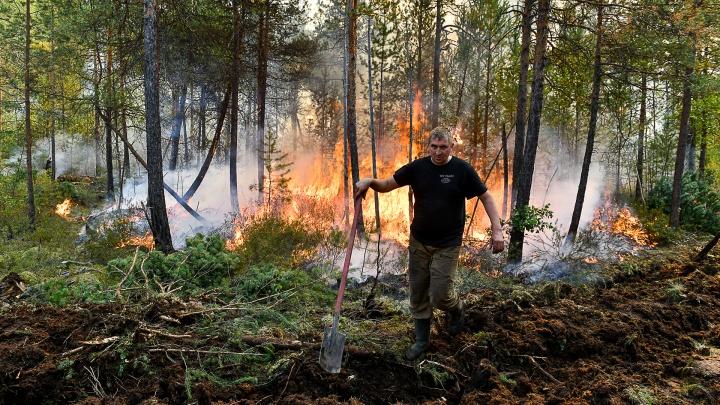 110 гектаров в огне: как тушат горящий лес под Екатеринбургом. Огненные кадры из самого пекла
