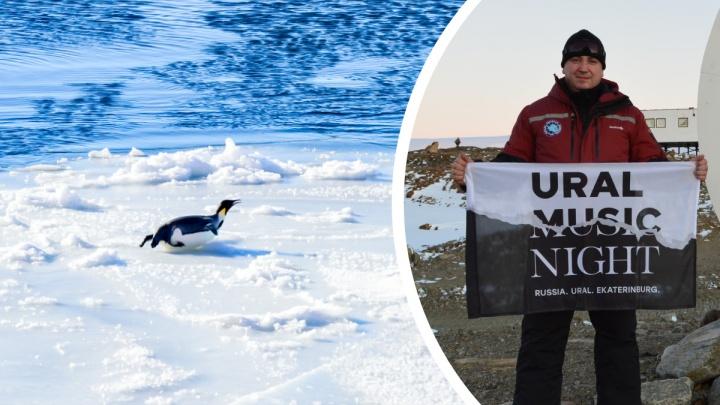 От этих кадров мороз по коже: брат екатеринбургского космонавта добрался до Антарктиды