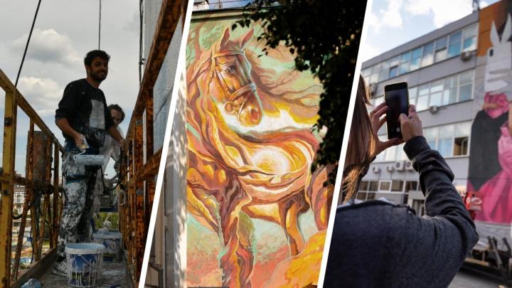 Как уличные художники превращают Екатеринбург в столицу стрит-арта. Репортаж со «Стенограффии»