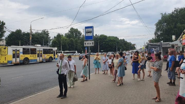 «Отозвалась гулким матом с остановок»: ярославский активист назвал главный минус транспортной реформы