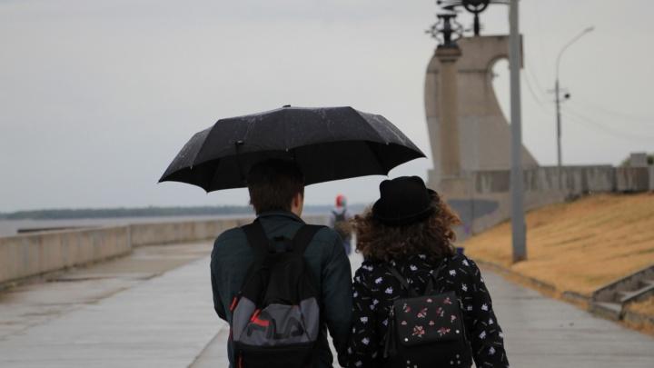 МЧС предупредило жителей Архангельской области о грозе со шквалистым ветром 25 апреля