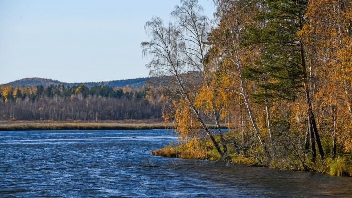 Мэрия пообещала 2,6 миллиона рублей за концепцию 4 километров набережной Исети